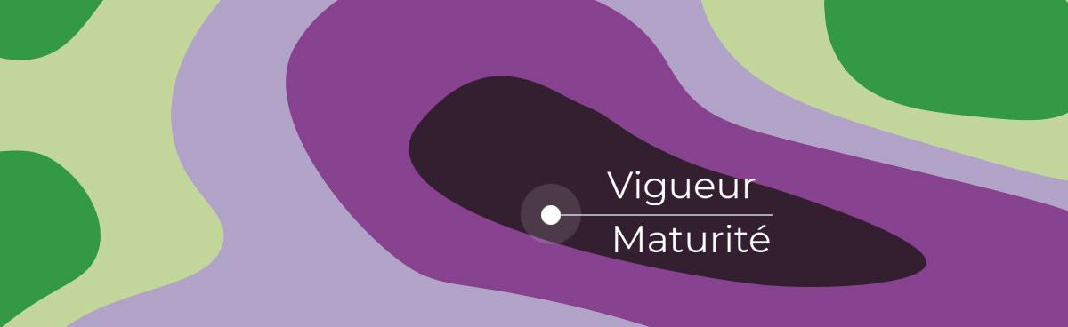 cartographie zonage vigueur maturité